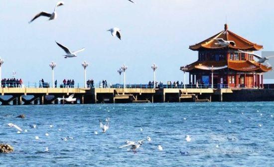 青岛栈桥公园涨潮